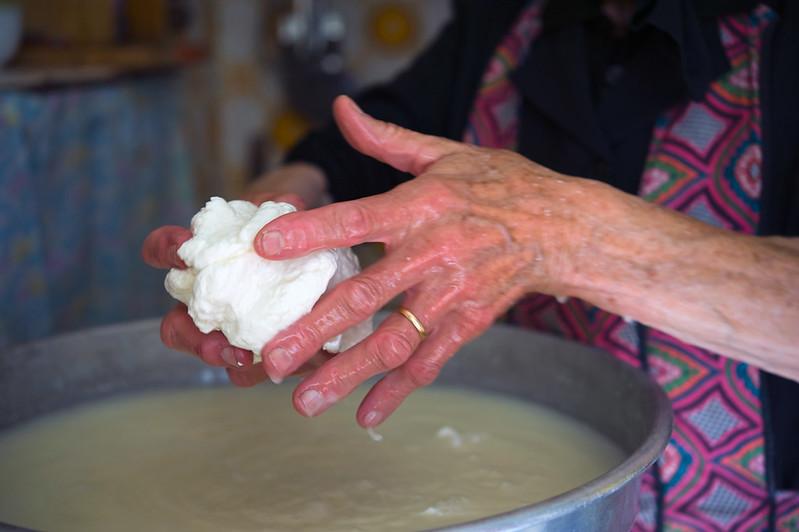 domashnij syr i ricotta  (formiruem syr 1)