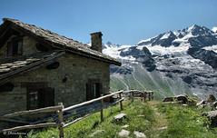 dal Valnontey al rifugio V. Sella (3° giorno del trekking in Valle D'Aosta)