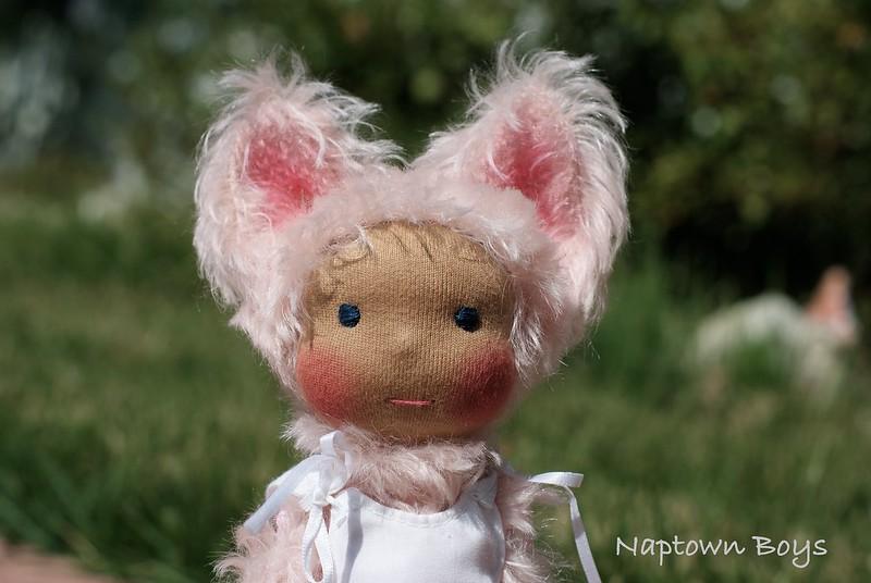 Shima, a Napling Kitten.