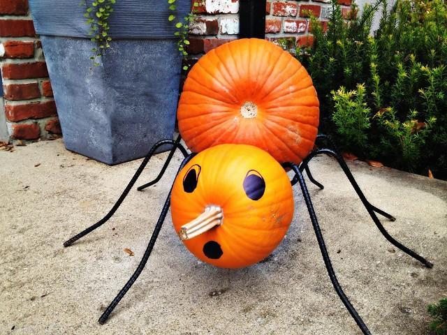 Miss Spider pumpkin