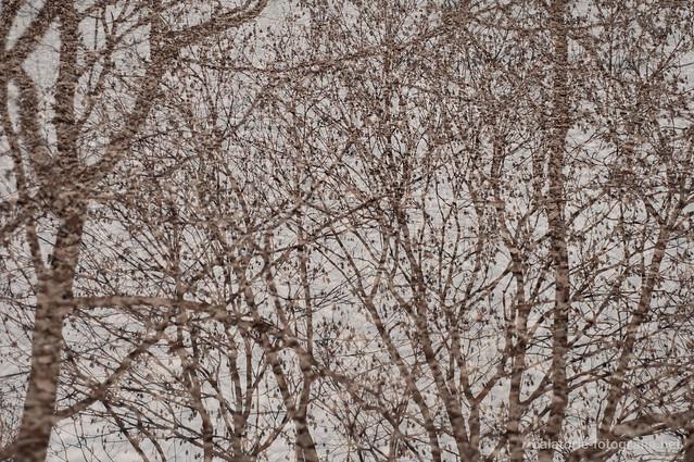 Poveste (întârziată) de Helloween. Expuneri multiple cu Nikon D90 10749865833_a9cda93f9f_z