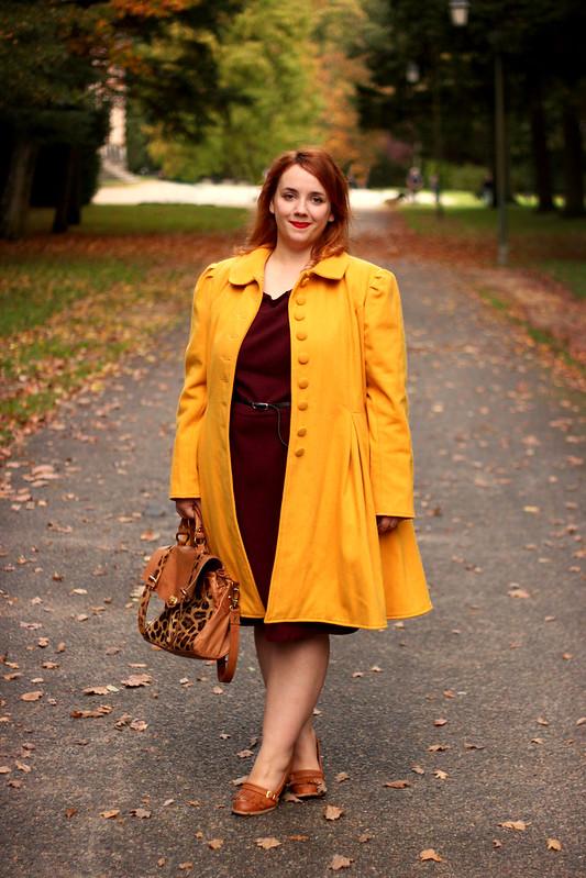 Aux couleurs d'automne 9