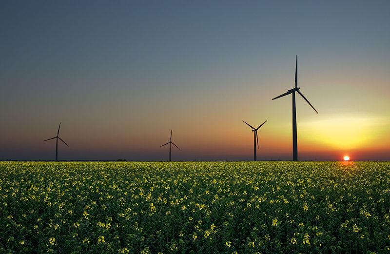 綠色電價貴45% 明年上路