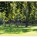 Arenbergpark 1030 Wien- reste des landschaftsgarten aus dem 19 jhdt | 2013-09