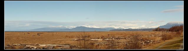 North Shore Panorama
