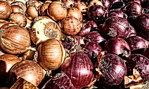 Onions at Farmer's Market by joeeisner