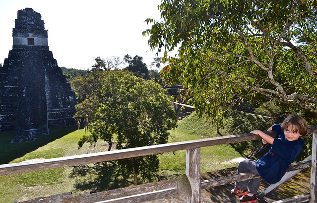 Main Plaza Tikal Maya Ruins Guatemala