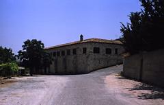 295Zypern Agios Minas