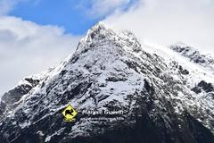 03 Greenstone track Nouvelle-zélande