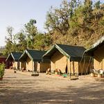 Sun, 03/04/2016 - 07:46 - The tents are comfortable jungle Safari Tents