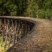 No rails