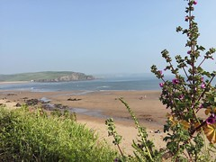 We're in Devon - camping by the sea, & staying in an old chapel house. There's hardly any service at all. #offthegrid #camping #holiday #bigburyonsea #devon