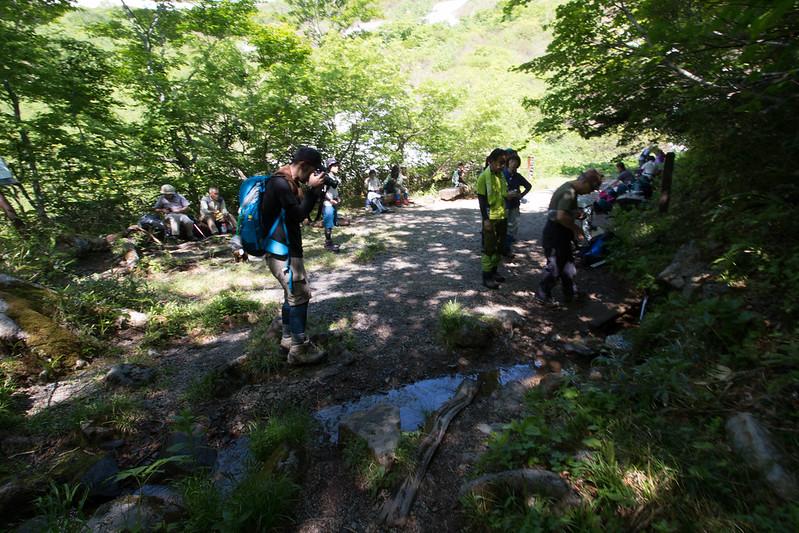 20160611-焼石岳-0276.jpg