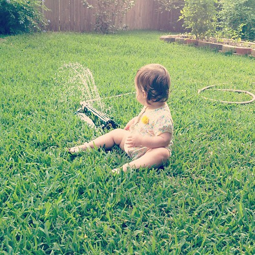 Why run through the sprinkler when you could just sit down next to it?