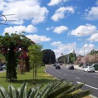 Avenida del Cid