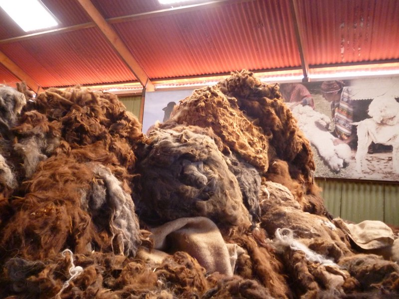 Bales of alpaca wool