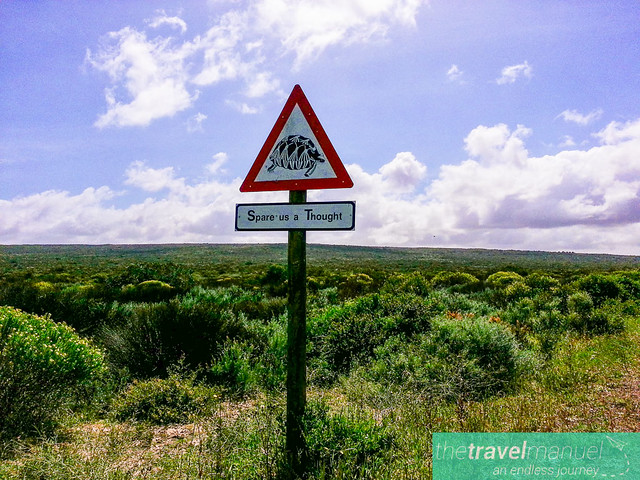 West Coast National Park and Jacobsbaai 2013-25