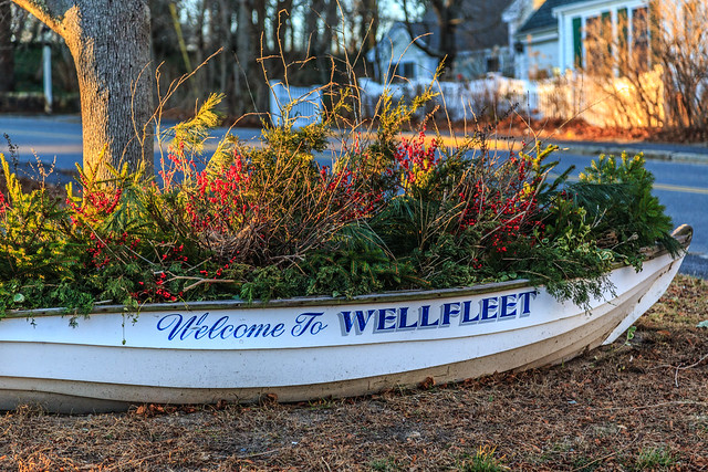 Welcome to Wellfleet