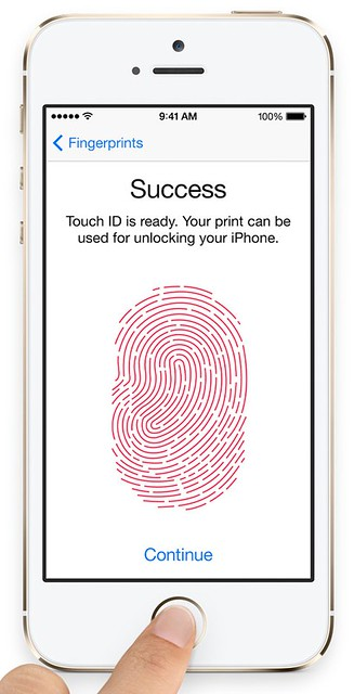 Touch ID training screen