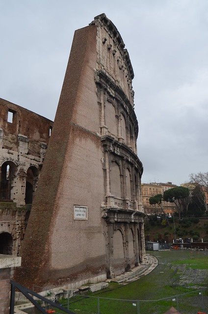 Roma 1 febbraio 2014 006