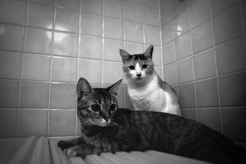 Haa&Nana_19991017