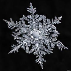Snowflake: Equal Balance