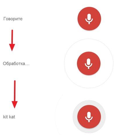 Как включить голосовой поиск Chrome
