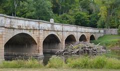 Monocacy Aqueduct 3
