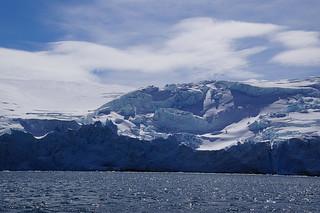 116 King George Island - Zodiaccruise