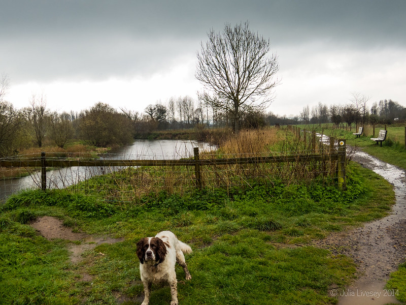 Max by the River Stour