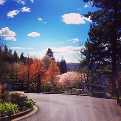#Seattle, you did good today. #pnw #washington #igersusa #igers_seattle #bestoftheday