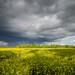 Stormy skies by Marlowpics/ Anna