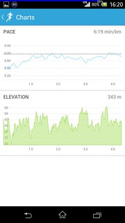 20140506_RunKeeper(Running)charts