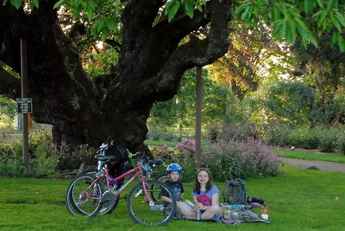 Bike Picnic Under Eugene Skinner's Cherry Tree