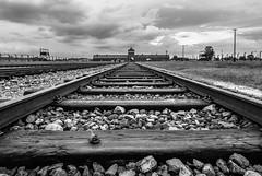Holocaust Memorial Day, Auschwitz-Birkenau concentration camp, Oswiecim, Poland