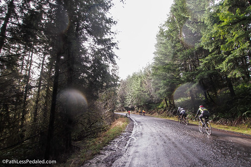 Gravel Recon 2 - Vernonia Burns Rd. Loop