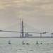 Bahia de Cadiz y su nuevo puente by jlvill