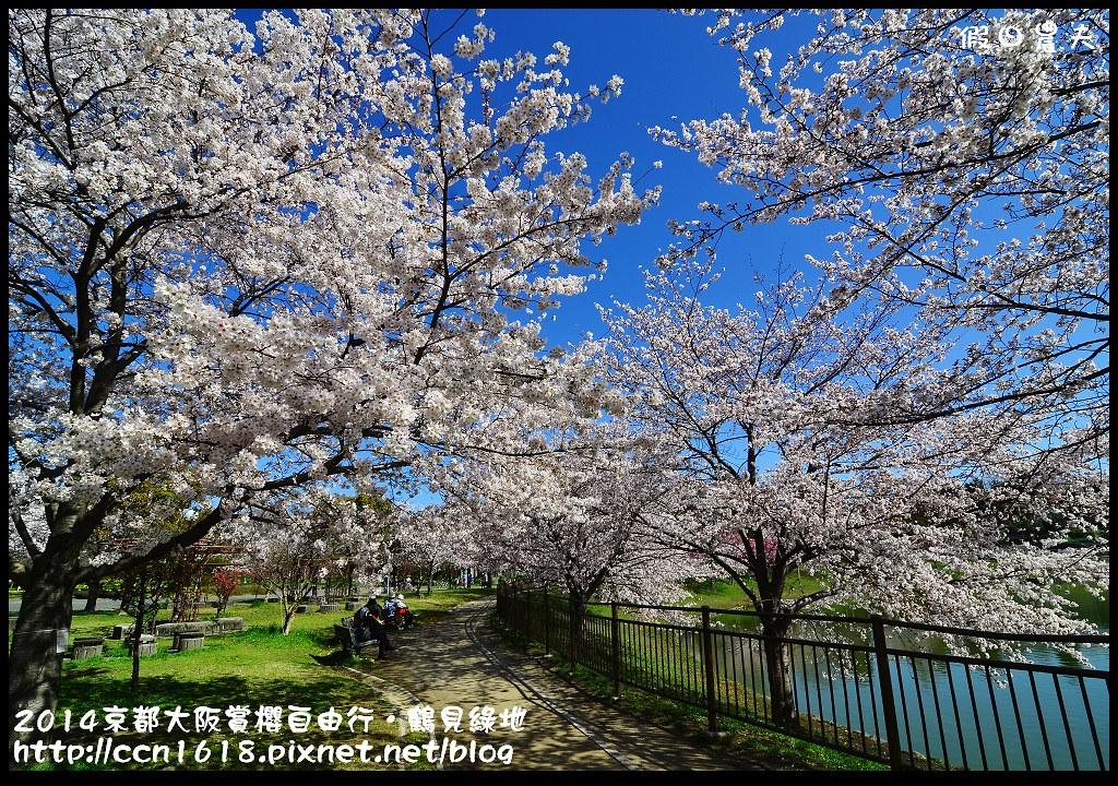 2014京都大阪賞櫻自由行.鶴見綠地DSC_1275