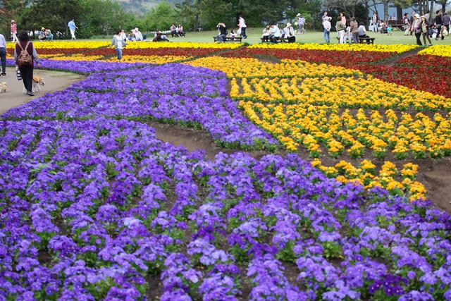 2014-05-04_00993_九州登山旅行.jpg
