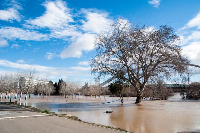 Crecica Ebro Enero 2015-24