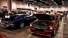 Mustang World 1.