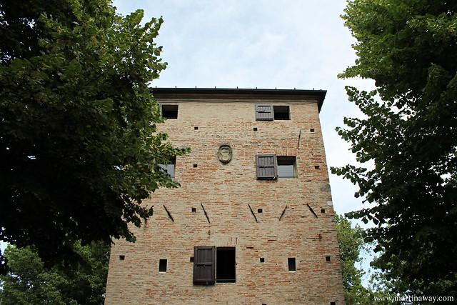 Museo delle conchiglie a Bellaria Igea Marina