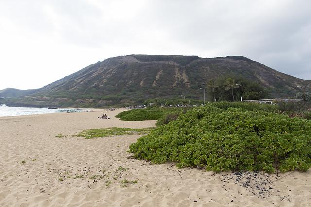 Sandy Beach Park  and Wawamalu Beach Park