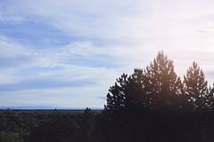 Boise Blue