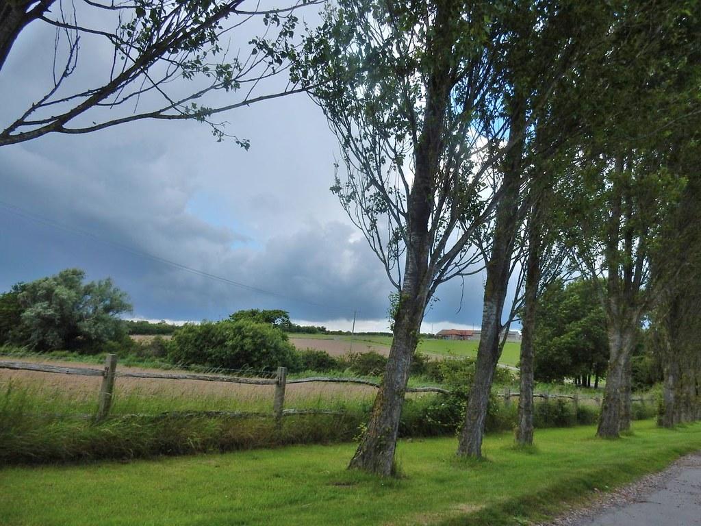 Stonery Farm Lewes to Berwick