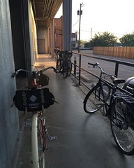 Cyclists gather for morning magic as the sun rises