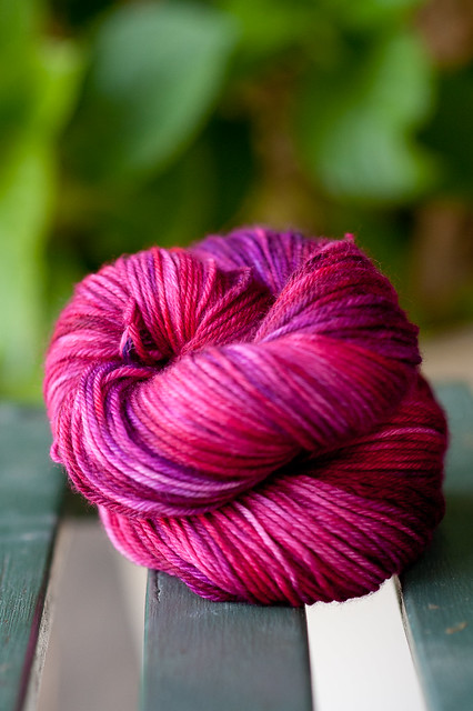 'Tart' on Dream in Cashmere DK SW (MCN)