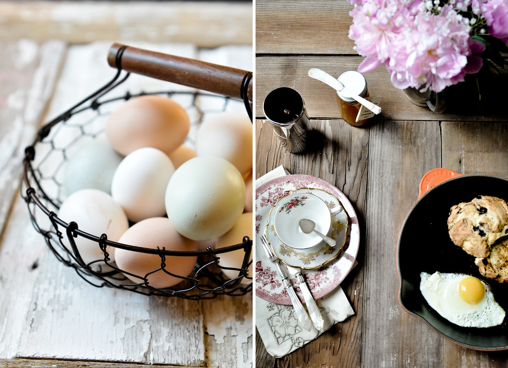 Eggs-whole-and-fried-collag