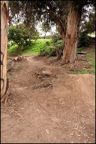 Balboa BMX Trails (2)