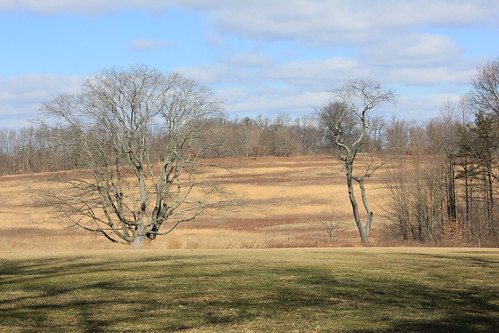 Andrew Wyeth landscape, Longwood Gardens, Chadds Ford, PA.